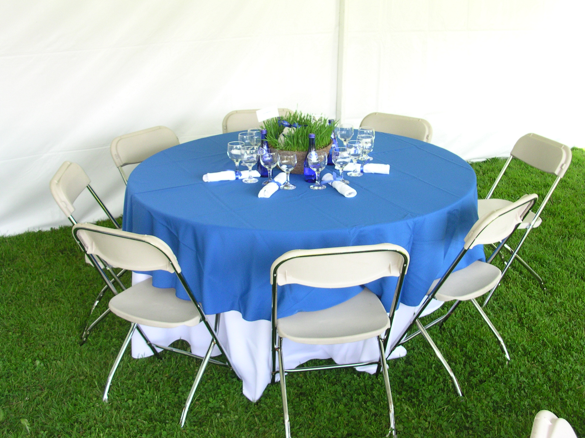 27 royal blue tablecloth white chairs