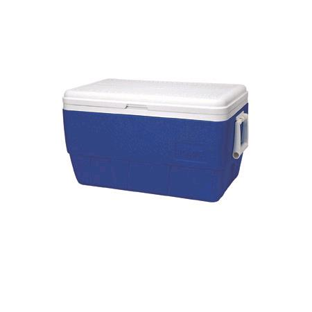 Where to find COOLER, ICE CHEST 54qt in Chicago