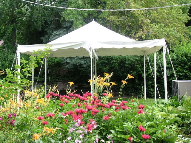Where to find CANOPY, 16x16 All Purpose Canopy Tent in Chicago