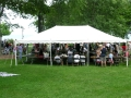 Rental store for CANOPY, 20x30 All Purpose Canopy Tent in Chicago IL