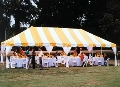 Rental store for 20x40, Y W - FIESTA FRAME TENT in Chicago IL