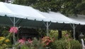 Where to rent 6X50 MARQUEE, WHITE in Skokie IL