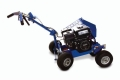 Where to rent LAWN BED EDGER, Bed Bug 5.5hp in Chicago IL